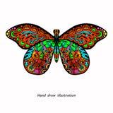 Modelo de la mariposa Fotografía de archivo libre de regalías