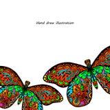 Modelo de la mariposa Imágenes de archivo libres de regalías