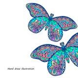 Modelo de la mariposa Fotos de archivo