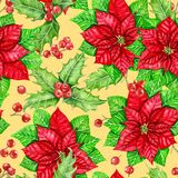 Modelo de la Navidad de la acuarela de la baya de la poinsetia y del acebo libre illustration