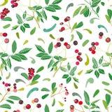 Modelo de la Navidad blanca con la planta y los brotes color de rosa libre illustration