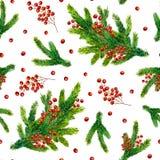 Modelo de la Navidad de la acuarela con las ramas del abeto y las bayas rojas Imágenes de archivo libres de regalías