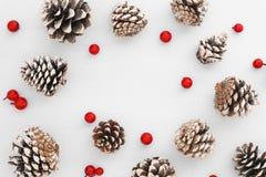 Modelo de la Navidad hecho de conos del pino y de bayas rojas en el fondo blanco Imagen de archivo libre de regalías