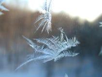 Modelo de la nieve de la ventana Fotografía de archivo libre de regalías