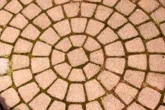 Modelo de la pavimentadora Imagen de archivo libre de regalías