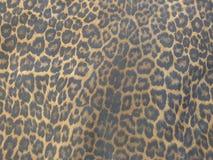 Modelo de la piel de Jaguar Imagen de archivo libre de regalías