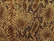 Modelo de la piel de serpiente Foto de archivo