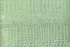 Modelo de la piel del cocodrilo Fotos de archivo libres de regalías