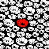 Modelo de la planta del vector de la flor de la naturaleza de la amapola Imagenes de archivo