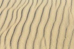 Modelo de la playa arenosa Fotos de archivo libres de regalías