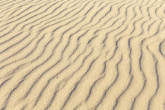 Modelo de la playa arenosa Foto de archivo