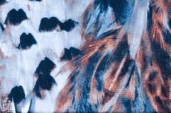 Modelo de la pluma Fotografía de archivo libre de regalías