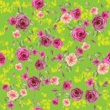 Modelo de la primavera de las rosas ilustración del vector