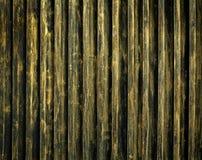 Modelo de la puerta del acero del oro Fotografía de archivo libre de regalías