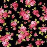 Modelo de la rosa, Foto de archivo libre de regalías