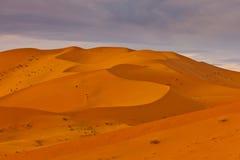 Modelo de la sombra en las dunas del desierto en Sáhara Imagen de archivo