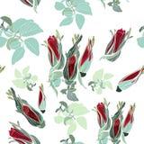 Modelo de la tela con las rosas en estilo del vintage Fotografía de archivo libre de regalías