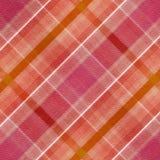 modelo de la tela escocesa Imagenes de archivo