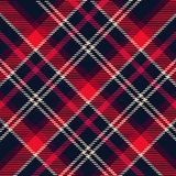 Modelo de la tela escocesa Fotografía de archivo libre de regalías