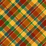 Modelo de la tela escocesa de la caída Fotografía de archivo libre de regalías