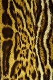 modelo de la textura del fondo de la piel del jaguar foto de archivo