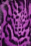 Modelo de la textura del fondo de la piel del lince foto de archivo libre de regalías