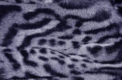 Modelo de la textura del fondo de la piel del lince imagenes de archivo