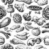 Modelo de las diversas verduras dibujadas stock de ilustración