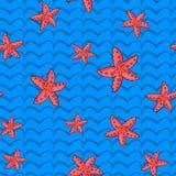 Modelo de las estrellas de mar del mar Imagen de archivo