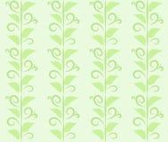Modelo de las hojas Fotografía de archivo
