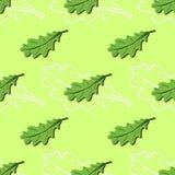 Modelo de las hojas Imagen de archivo