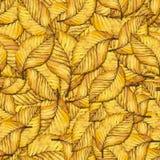 Modelo de las hojas de otoño de la acuarela Imagen de archivo libre de regalías