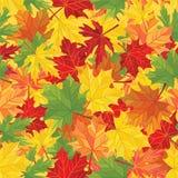 Modelo de las hojas de otoño Textura inconsútil del vector Foto de archivo libre de regalías