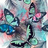 Modelo de las hojas y de las mariposas tropicales de palma Vector azul-pi ilustración del vector