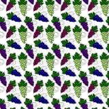 Modelo de las uvas Imágenes de archivo libres de regalías