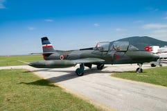 Modelo de los aviones militares - de la gaviota Foto de archivo libre de regalías