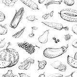 Modelo de los bosquejos de la fruta y verdura Fotografía de archivo libre de regalías