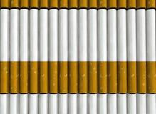 Modelo de los cigarrillos Imágenes de archivo libres de regalías
