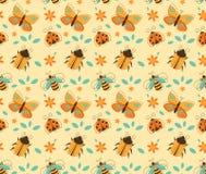 Modelo de los insectos Imagen de archivo libre de regalías