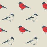 Modelo de los pájaros Imagenes de archivo
