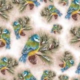Modelo de los pájaros Fotografía de archivo libre de regalías