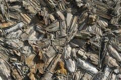 Modelo de los pedazos de madera aterrorizados que adornan una pared Fotos de archivo