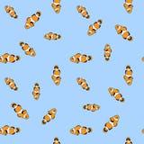 Modelo de los pescados del payaso Fondo inconsútil del modelo foto de archivo