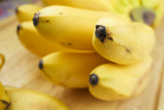 Modelo de los plátanos maduros Fotografía de archivo libre de regalías