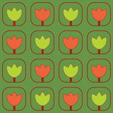Modelo de los tulipanes Fotografía de archivo libre de regalías