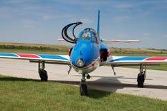 Modelo de los vuelos - de la gaviota Imagen de archivo libre de regalías