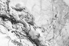 Modelo de mármol blanco del fondo del extracto de la textura con alto resol Imagenes de archivo