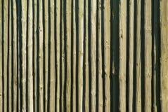 Modelo de madera del fondo de Pallisade del registro Fotos de archivo