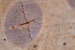 Modelo de madera y madera agrietada fotos de archivo
