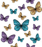 Modelo de mariposa Foto de archivo